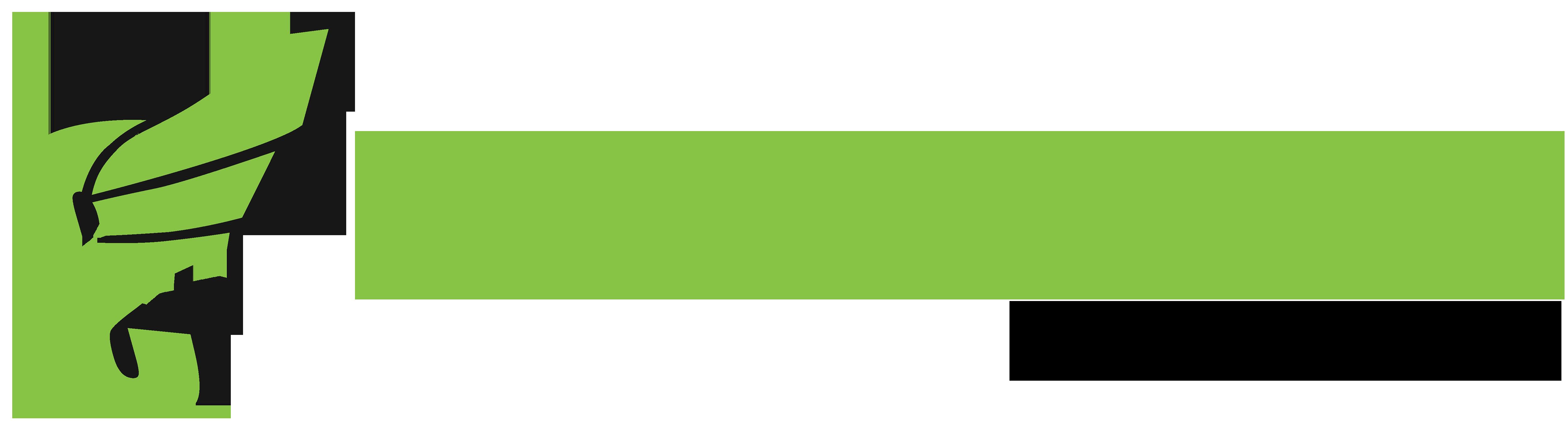 Skochypstiks